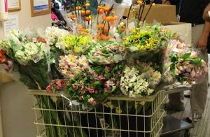 whole shopping cart of my flowers